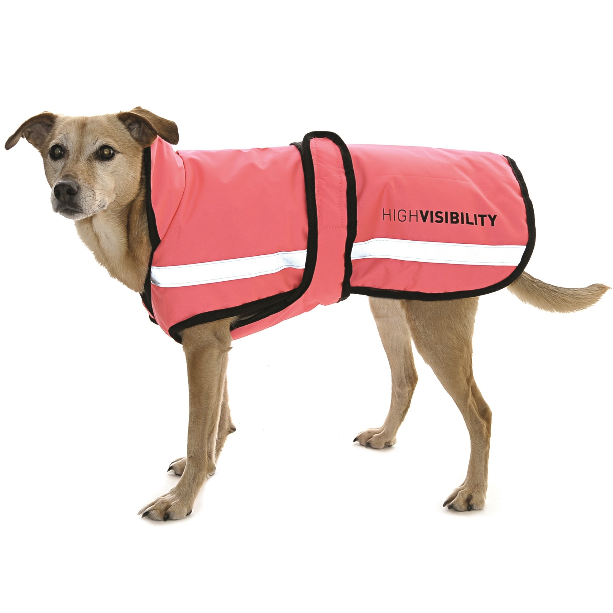 Equisafety Waterproof Dog Rug Pink