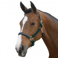 Mark Todd Leather Headcollar (Black)