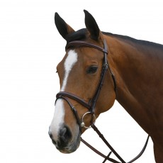 Mark Todd Square Raised Padded Bridle with Flash Noseband (Havana)