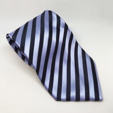 Equetech Broad Stripe Show Tie (Navy/Light Blue)