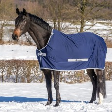 Bucas Select Cooler Rug