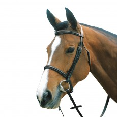 Mark Todd Plain Raised Bridle with Cavesson Noseband (Black)