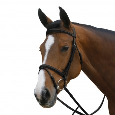 Mark Todd Square Raised Padded Bridle with Flash Noseband (Black)