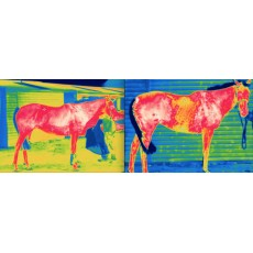 AeroChill Horse Cooling Rug