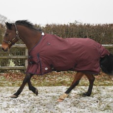 JHL Essential Lightweight Turnout Rug (Burgundy/Navy)