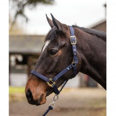Mark Todd Turnout Safety Headcollar (Black)