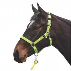 Mark Todd Deluxe Padded Headcollar With Leadrope (Yellow)