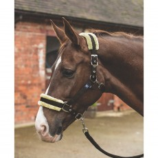 Mark Todd Fleece Lined Headcollar with Lead Rope (Brown/Natural)