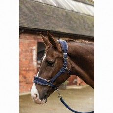 Mark Todd Fleece Lined Headcollar with Lead Rope (Navy)