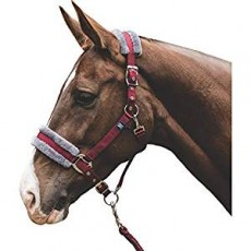 Mark Todd Fleece Lined Headcollar with Lead Rope (Burgundy/Grey)