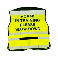 Equisafety Adults Air Waistcoat Horse In Training (Yellow)
