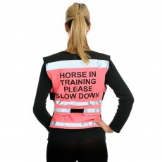 Equisafety Adults Air Waistcoat Horse In Training (Pink)