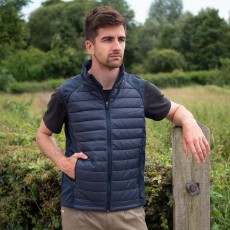 Mark Todd Unisex Quilted Gilet (Navy)