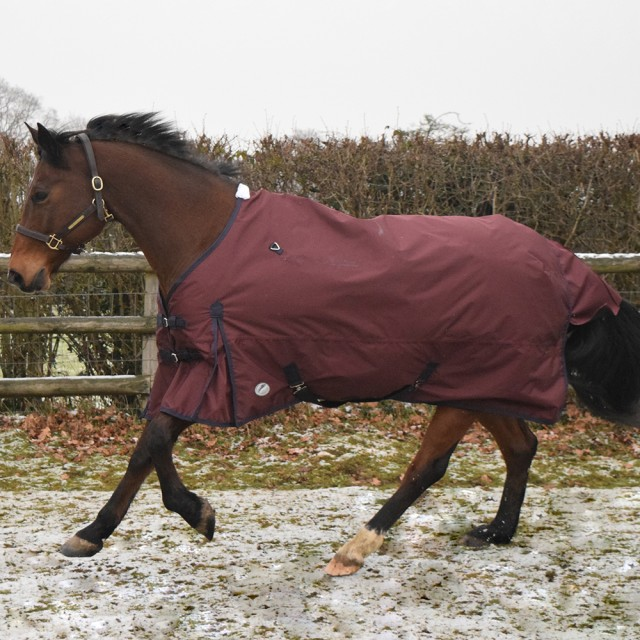 JHL Essential Lightweight Turnout Rug (Burgundy & Navy)