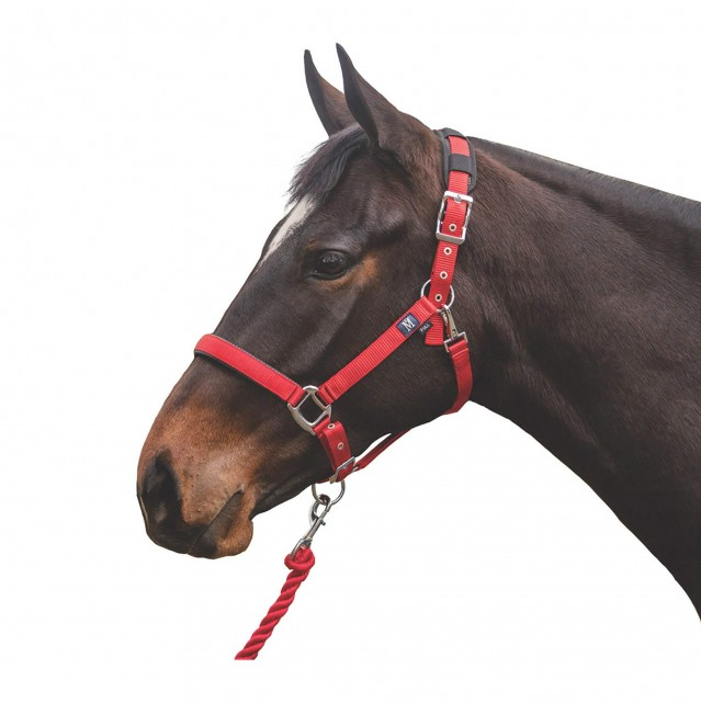 Mark Todd Deluxe Padded Headcollar With Leadrope (Red)